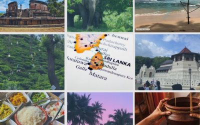 8 good reasons to visit the island of Sri Lanka !