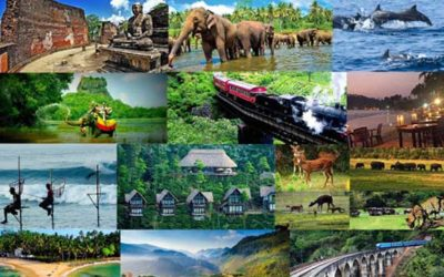 8 good reasons to visit the island of Sri Lanka in the south of India !